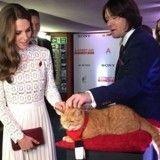 Quand Kate Middleton se prend un vent… par un chat