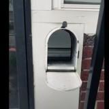 Le facteur s'approche de la boite pour déposer le courrier : il pousse un cri en voyant ce qu'il y a dedans !