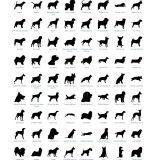 Des coques de téléphone et tatouages temporaires à l'effigie de vos chiens préférés !
