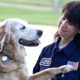 Mort de Bretagne, le dernier chien-sauveteur du 11-Septembre