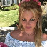 Britney Spears maltraitante avec ses chiens ? Son ancienne gouvernante l'accuse