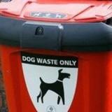 Mais qui a volé une poubelle à caca pour chiens au Royaume-Uni ?