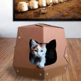 Coup de coeur pour ces maisons pour chat... en carton !