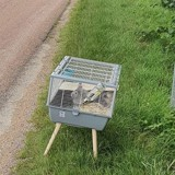 Cage à lapins abandonnée au bord de la route : les bénévoles découvrent le pire