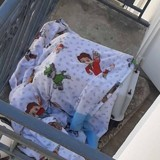 Sauvetage en urgence d'un chaton enfermé sur un balcon : l' « excuse » des propriétaires est écoeurante