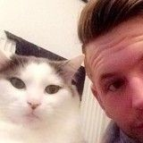 Son chat disparaît, il appelle à la solidarité et organise une marche pour le retrouver