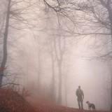 Elles sortent avec les chiens à la campagne, un énorme bruit retentit et l'irréparable se produit