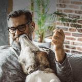 """""""Donnons-leur autant qu'ils nous apportent !"""" : la nouvelle campagne SPA pour soutenir les animaux en cette fin d'année"""