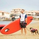 Concours cani-triathlon : avez-vous gagné un dossard ?