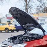 Il démarre sa voiture et entend un cri : après avoir regardé sous le capot, il appelle tout de suite à l'aide ! (Vidéo)
