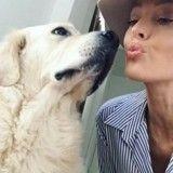 Caroline Receveur fait de son chien une star sur Instagram