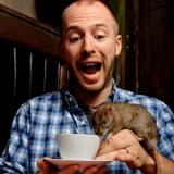 Après le café des chats, voici le café des rats !