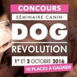 Dog Revolution : 10 places à gagner pour assister au séminaire canin