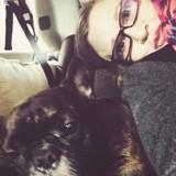 Hommage à Carrie Fisher, alias Princesse Leia, qui aimait tant les chiens