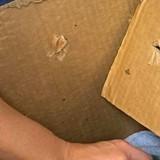Un bénévole trouve une boite scotchée : ce qui est écrit sur le carton lui glace le sang
