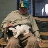 Coup de foudre au refuge : cette chatte de 13 ans ne veut plus quitter l'homme venu la rencontrer !