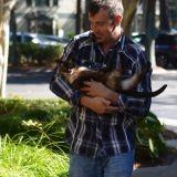 Il retrouve son chat 8 ans après sa disparition