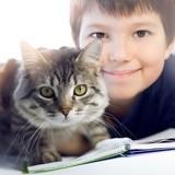 Dans cette école du Vaucluse, les enfants ont pour camarades... des chats !