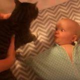 Quand seul un chat peur redonner le sourire à un bébé (Vidéo du jour)