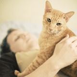 Les femmes et les animaux de compagnie : vive les chats... et les poules !