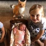 Cette famille a reçu des cartes du monde entier après la mort de son chat