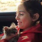 Les retrouvailles entre cette fillette et son chat vont vous mettre les larmes aux yeux (Vidéo du jour)