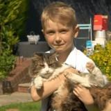 Une famille incinère son chat : quelques jours plus tard, elle réalise son énorme erreur
