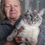 Une mamie kidnappait des chats !