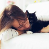 Le chat aime t-il (vraiment) son maître ?