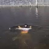 Il promenait son Husky quand soudain, il a aperçu quelque chose dans l'eau… (Vidéo)