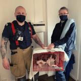 Il emménage dans une maison et entend des miaulements dans le mur de sa cuisine : les pompiers interviennent !