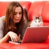 Et si le Web contribuait à l'abandon des chats?
