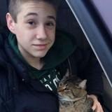 Sur l'autoroute quelqu'un jette un chat par la fenêtre. En voyant ça, un garçon de 14 ans saute de sa voiture !