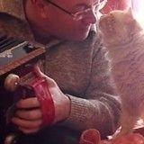 Etonnant : un chat câline son maître dès que celui-ci joue de l'accordéon