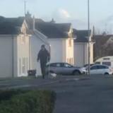 Il voit un chat marcher très lentement à côté d'un homme : la raison est bouleversante