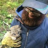 Il croise un chaton dans la forêt, mais réalise vite que ce n'est pas un chaton du tout