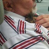 Sauvé chaton, il rend la pareille à son héros en grandissant