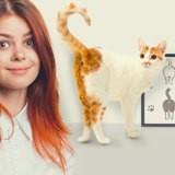 Pourquoi votre chat aime-t-il vous montrer ses fesses ?