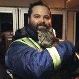 Fan de trains, un chat miraculé a été retrouvé à 700 kilomètres de chez lui