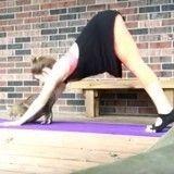 Faire du yoga avec des chats ? Une mission impossible ! (Vidéo du jour)