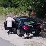 Il abandonne son chien, mais n'avait pas remarqué un petit détail (Vidéo)