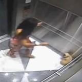 Elle frappe son chien dans un ascenseur mais n'avait pas remarqué qu'elle était filmée (Vidéo)