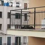 Il jette un coup d'oeil sur le balcon de son voisin et se précipite pour appeler la police