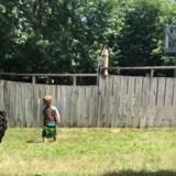 Cette maman voit son fils jouer avec quelqu'un dans le jardin, mais personne n'est à la maison… (Vidéo)