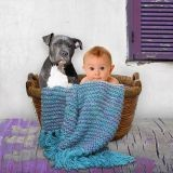 Les enfants et le chien : comment assurer une bonne cohabitation ?