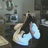 Le chien qui aimait (beaucoup) les bisous ! (Vidéo du jour)