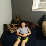 Lorsque son chien tombe malade, ce petit garçon prend une grande (et belle) décision