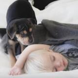 La relation entre ce chien et cet enfant est très touchante (Vidéo du jour)