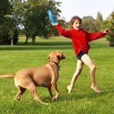 Des enfants mordus par des chiens : ils pensent qu'ils sourient
