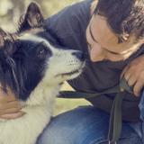 Applications de rencontre : les hommes qui utilisent des chiens plus susceptibles de rechercher une relation sérieuse
